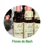 Sesión de Flores de Bach